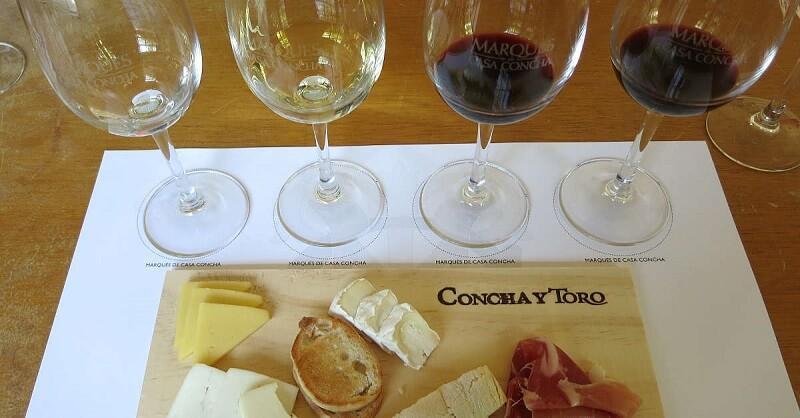 Degustação de vinho e queijos em Santiago do Chile