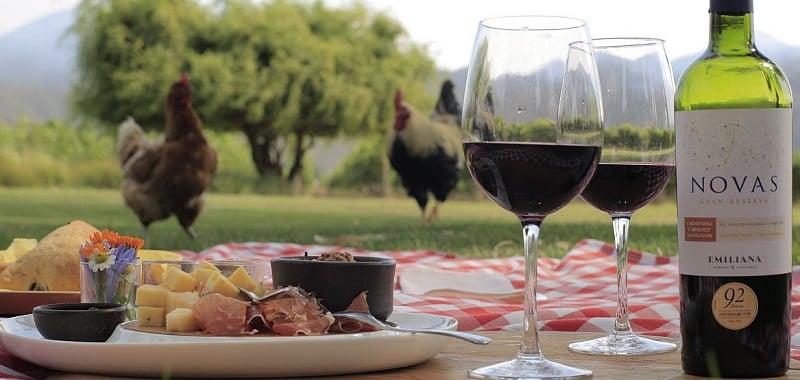 Degustação de vinho e queijos na vinícola Emiliana no Chile