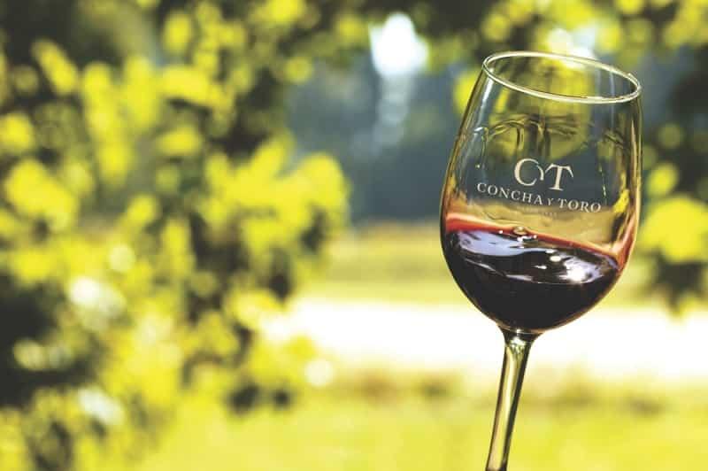 Vinho Concha y Toro